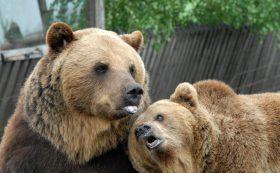 Rīgas Zooloģiskā dārza filiāle