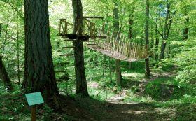 Циравский лесной парк