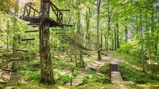 Cīrava Forest Park