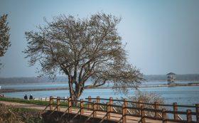 Zirgu Island Nature Trail