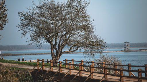 Naturpfad der Zirgu-Insel